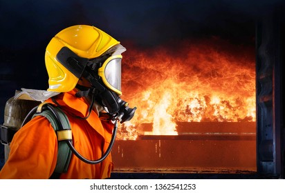 Fireman Enter to extinguish the burning fire.