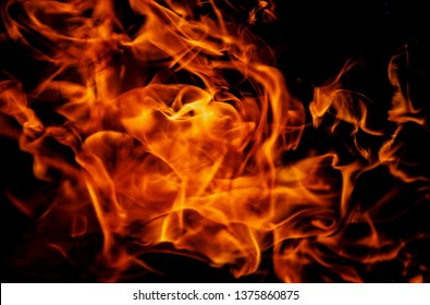 Fireplace burns wood in the night.Beautiful fire flames in close up