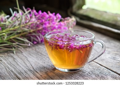 Fireweed healthy herbal tea. Mug of chamerion tea and bunch of medicinal herbs on background inside the retro village house.