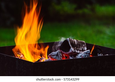 Firewood buring at campfire in the park during holidays