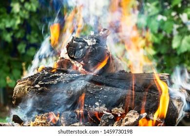 firewood burning on the brazier brazier, fire, coals, background