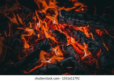 firewood burns in a fire