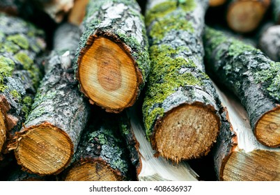 firewood close up