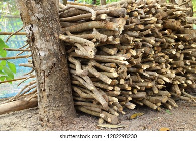 firewood for cooking and warm