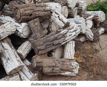 firewood in the farm