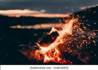 Firewood on night nature