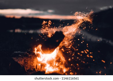 Firewood on night nature