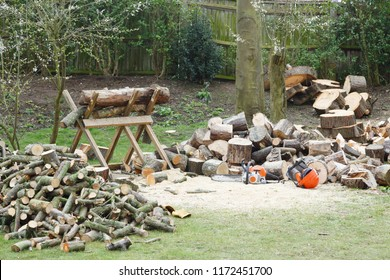 Firewood on a saw horse with chainsaw next to piles of firewood in a garden setting