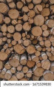 A lot of firewood, round cuts of wood. Pile of firewood. Wall of firewood.