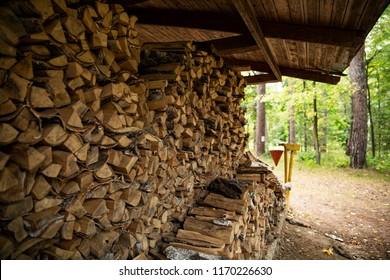 Firewood. Firewood sawn wood, arranged in a row