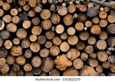 Firewood stacked and prepared for winter Pile of wood logs. Pile of wood logs ready for winter. Wood texture background have many logs that cut from big trees and small trees.