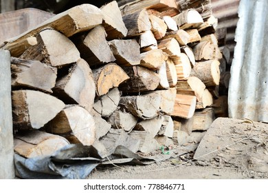 Firewood is used in the winter and is used for cooking , fire wood