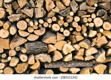 a lot of firewood for the winter