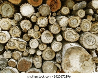 Firewood for the winter, stacks of firewood, pile of firewood. Lumber background.