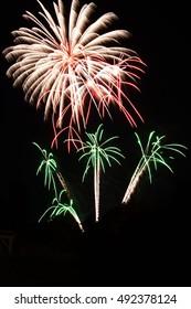 Firework in the night
