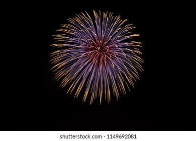 A fireworks exploding in the night sky.