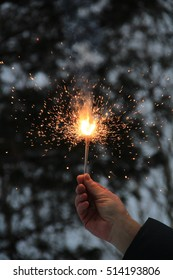 fireworks in the man's hand on the background of the forest