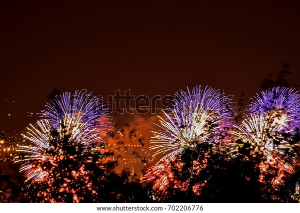 Fireworks on the edge of the forest