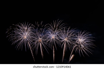 Fireworks on the sky for background,Concept background aniversary or New year.