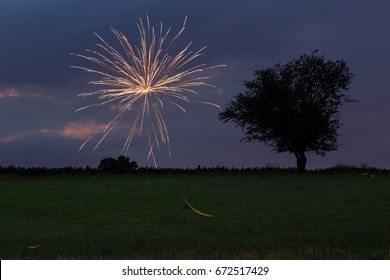 Fireworks over meadow with firefly light trails