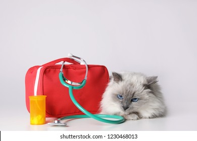 First aid kit and cute cat on light background. Animal care