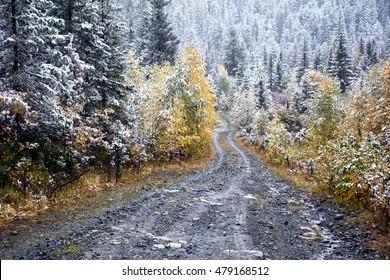 First autumn snow on road to Yazevoe lake in East Kazakhstan, Altai mountains