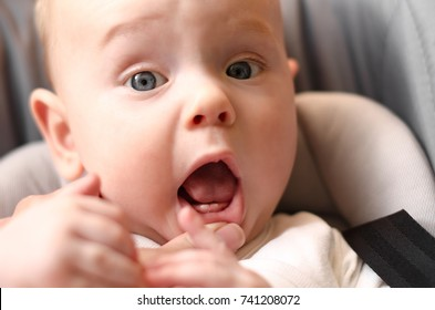 The first babies teeth. The lower front teeth (the lower central incisors).  Teething