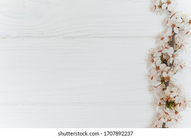 First blossom.Spring and summer white flowers on vintage wooden background.Space for your text.