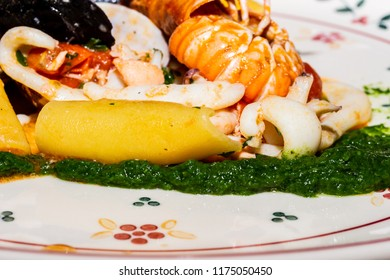 First course of italian cuisine haute composed of Paccheri with cream of turnip tops, mussels, scampi and calamar.