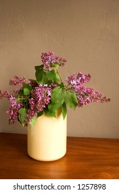 First lilacs of spring in a yellow vase