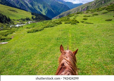 First person view from the horse back to steep mountain path, Altyn Arashan, Kyrgyzstan