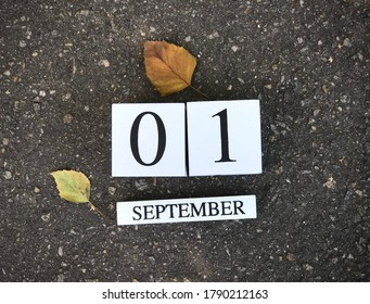 First of September. Back to school concept. Holiday September 1. The new school year.