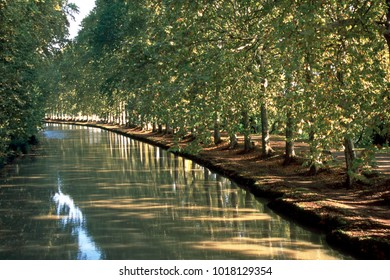 First signs of autumn on the tree lined canal  Canal du Midi at Capestang, Herault, France