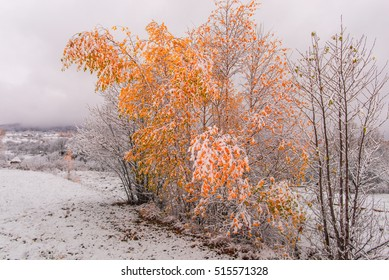 The first snow in november
