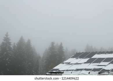 First snow in October on a roof with solar panels, conifer forest in the background, Bavaria