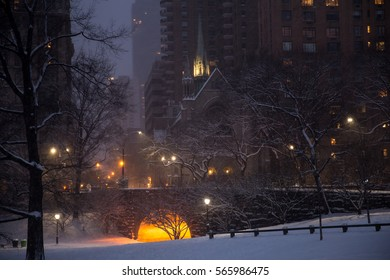 The First Snowstorm Of 2017 in Central Park, New York