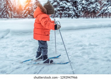 The first steps of a boy child 4-6 years old on children's skiing with sticks. In the park in winter. The concept of sports and leisure from a young age. Free space for text.