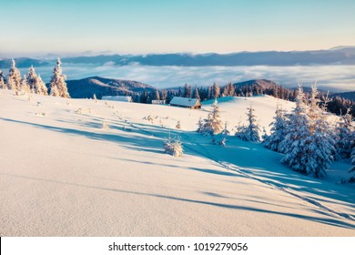 First sunlight glowing mountain hills and valleys in Carpathians. Sunny winter sunrise in mountain farm with snow covered fir trees. Happy New Year celebration concept. Orton Effect.