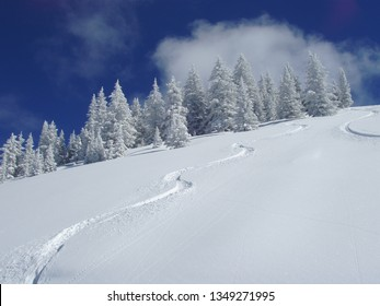 first tracks in snow.  Nothing prettier than a blue sky on a slope covered with fresh powder.  A skier's dream for the first run of the day.  Taken in Vail, Colorado