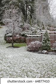 First winter snow has fallen into autumnal garden