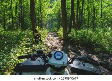 Erste Person Blick ATV Fahrer Straße Wald in Schlamm. ATV-Rennfahrer ruht auf einem Fahrrad. Abenteuerreise in den Wald. Weicher Fokus. Mann auf Quadbike Rennen über raues Gelände im Wald ein heißer Sommertag.