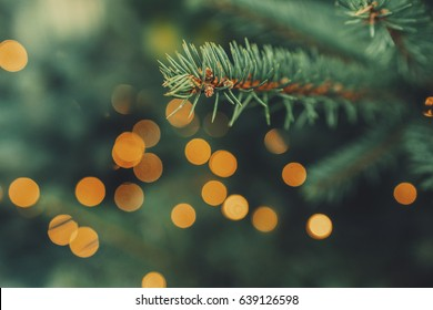 Fir-tree spruce branch with orange bokeh unfocused sparkles decor lights. Christmas new year year background template. Holiday wallpaper concept. Shallow focus. Vintage effect. Copy space.