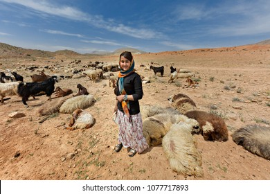 FIRUZABAD, IRAN - APRIL 4, 2018: Iranian nomadic shepherdess belonging to the tribe known as Qashqai, herds goats and sheep, in Firuzabad, Iran.