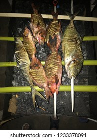 Fish barbecue on Maldives after fishing