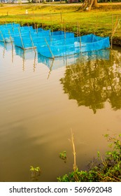 Fish cages in farm, Thailand.