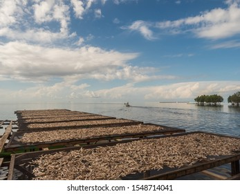 "The fish dries on specially prepared nets at the Seram Sea in Kaimana, fishing. ""Aktivitas menjemur ikan"". Kaimana, Bird's Head Peninsula, West Papua, Indonesia, Asia. - Shutterstock ID 1548714041"