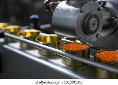 fish factory, salmon caviar