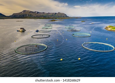 Fish farm in Norway, aerial view
