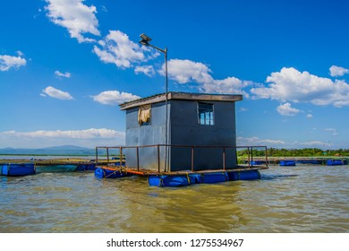 A fish farm security house floating on a lake