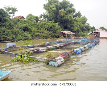 Fish farming in the Mun River of Thai fishermen in the provinces. Use floating fish floating in the river to provide natural water for fish.It is a great business for those who have a waterfront area.